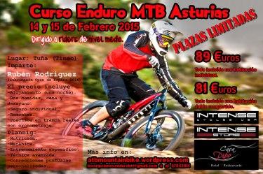 cartel-curso-asturias15